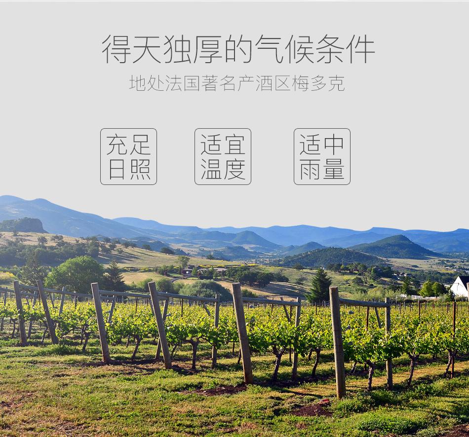 2011年白豹城堡红葡萄酒_02