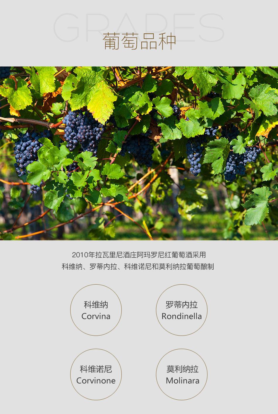 2010年拉瓦里尼酒庄阿玛罗尼红葡萄酒--葡萄品种